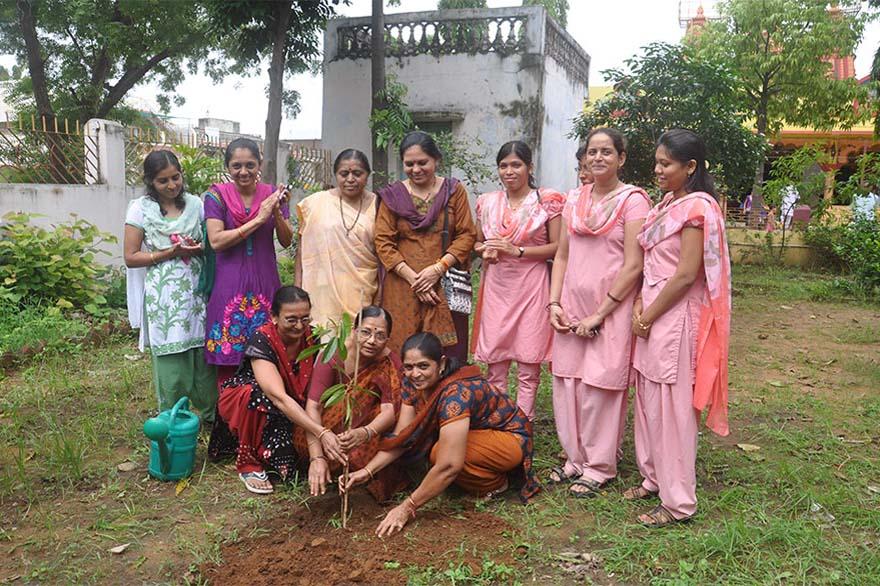 Tree-Plantation12